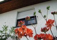 Cortinas a colocar delante de la ventana